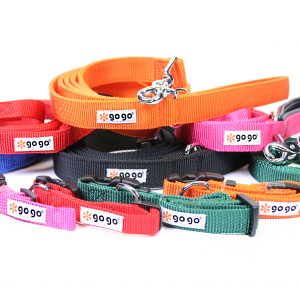 Collar, Leash & Harness